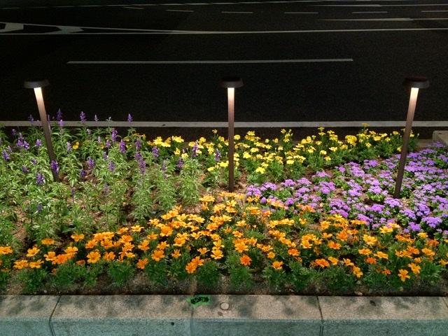 神戸フラワーロード、FLOS BELVEDERE CLOVE by Antonio Citterio