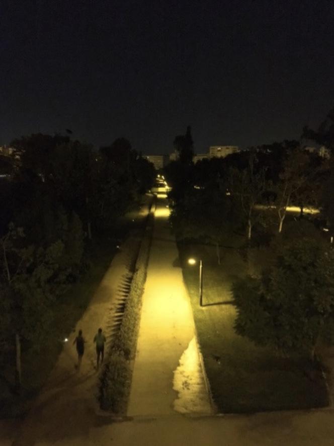 セラーノスの塔、スペイン、バレンシア、トゥリア公園、出張、早朝ランニング