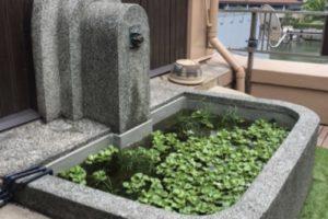 莫大会館4階テラス 巨大な石の盥 噴水 レトロ 有形登録文化財